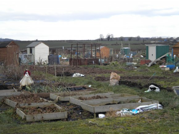 Sutton Allotment Site